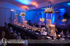 Love the centerpieces! Wonder how cheap I could do something like this for....?