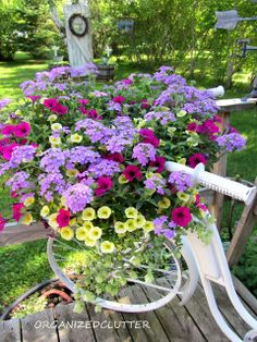 Bike basket annuals are Large Lilac Blue Verbena, Superbells Yellow Chiffon Calibrachoa, Supertunia Mini Purple and Ornamental Oregano. Colorful Combination!
