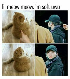 Aww so cute lil mew mew BTS Bts Memes Hilarious, Bts Funny Videos, Bts Boys, Bts Bangtan Boy, Memes Humor, K Pop, Les Aliens, Bts Tweet, Min Yoongi Bts