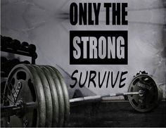 Gym Wall Decal For Home Gym Motivational Fitness - Only The Strong Survive
