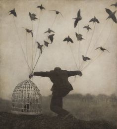 Image result for robert and shana parkeharrisonPhotographers Robert and Shana ParkeHarrisonFosterginger.Pinterest.ComMore Pins Like This One At FOSTERGINGER @ PINTEREST No Pin Limitsでこのようなピンがいっぱいになるピンの限界