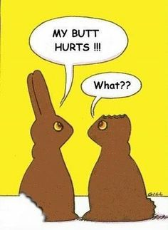 chocolate bunnie cartoon | ... Chocolate Easter Bunnies . image of Chocolate Easter Bunnies cartoon