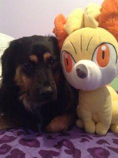 Sasuke and fennikin