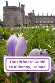 Headed to Kilkenny, Ireland? From castles to breweries, pubs to cthedrals, ghost tours and more, I'm sharing the best things to do in Kilkenny.
