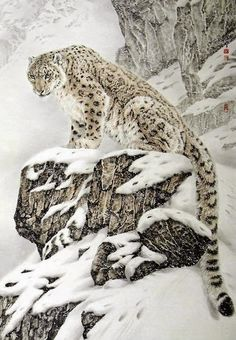 Snow leopard - king of the mountain (big cats). beautiful leopard in the snow animals birds nature wildlife photography Nature Animals, Animals And Pets, Cute Animals, Wild Animals, Baby Animals, Fierce Animals, Draw Animals, Beautiful Cats, Animals Beautiful