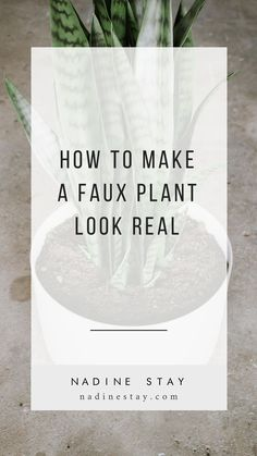How to make a faux plant look real - how to make a fake plant look like it's planted in real soil. Use a pot and cardboard to turn a fake plant into a real looking plant. Interior design tips by Danica of Nadine Stay. Fake Plants Decor, Faux Plants, Plant Decor, Create Floor Plan, Modern Crafts, Snake Plant, Diy Party Decorations, Cool Diy Projects, Interior Design Tips