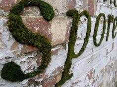 """moss graffiti. The artist Anna Garforth developed green graffiti made of Moss as part of her art project Mossenger. As glue she uses a mix of yogurt and sugar. """"The Moss acts as a healthy alternative for spraying paints, eventually it will colonize and take over the wall"""""""