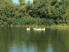 Mantova, lago superiore