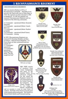 South African Air Force, Service Medals, Army Day, School Of Engineering, Military Insignia, Defence Force, Paratrooper, African Countries, Special Forces