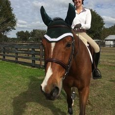 Here is Warwick's #sweetbriarcollege inspired bonnet in use. We featured his bonnet in an earlier post, it's great to see it in action at #HITSOcala! #prettyproductsforprettyponies #hunterjumper #beadsnshinythings #equestrian #jumperstyle #styleyoursteed #fillyfinery