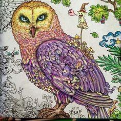 Mais uma coruja linda .. dessa vez colorida por @juliasnf . . . . #drawing #secretgarden #jardimsecreto #johannabasford #jardimsecretolove #staedtler #mycreativeescape #coloringbook #polychromos #enchantedforest #lostocean #draw #coloring #pencil #florestaencantada #crayola #stabilo #colors#love#adultcoloring #creative #colouring#colour#artist #oceanoperdido #goodafternon#boatarde