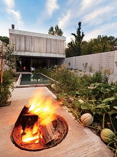 A curved concrete staircase weaves around the sloped garden at the centre of this house in Buenos Aires, which has been designed by local studio Bam! Concrete Staircase, Concrete Patio, Outdoor Spaces, Outdoor Living, Outdoor Decor, Outdoor Photos, Design Ikea, Appartement Design, Sloped Garden