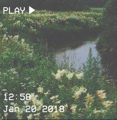 M O O N V E I N S 1 0 1 #vhs #aesthetic #lake #green #flowers