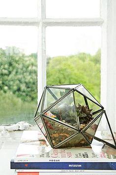 Urban Grow - Terrarium étoile bronze - Urban Outfitters