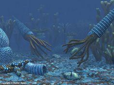 Paleozoic Earth - Orthoceratites & trilobites on the bottom of an Ordovician sea 480 million years ago; Iapetus Ocean; Phoibic Ocean; Tornquist Sea; Paleoasiatic Ocean; Ural Ocean; Rheic Ocean - Natural History Illustration