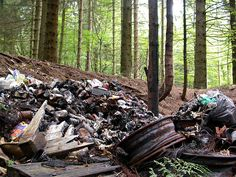 File:Illegal dump at the hearth of the Belgian Forest (2682745838).jpg