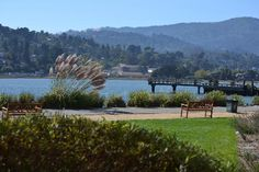 Run & bike trail to Sausalito, Ca from Mill Valley.