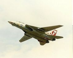 "US Navy Grumman F-14A Tomcat of VF-111 ""Sundowners"""