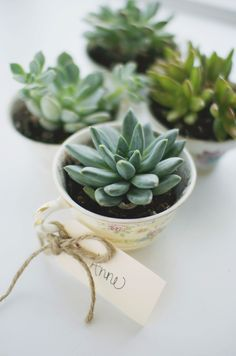 Whether you are throwing a spring brunch, bridal shower, or birthday party, these little succulents are the perfect party favor. With the weather changing, I love to bring in more plants and greenery to my home. It really brightens up a space and brings life to a room.  Materials: succulent plants tea cups soil for succulents and cacti blank name tags rustic twine pen or marker scissors To make: 1. Start by writing the names of your guest on each name tag. 2. Take each succulent out of…