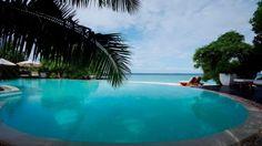 Palm trees swimming pools