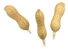 Peanut Pen