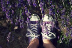 What can Lavender do for YOUR skin? Find out here!