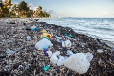 A recent study of ocean trash counted a staggering 5.25 trillion pieces of plastic at loose in the seas. Here's what we know-and don't know-so far.