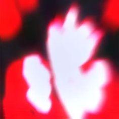 Evil Anime, Yandere Anime, Animes Yandere, Anime Neko, Dark Anime, Otaku Anime, Kawaii Anime, Anime Music Videos, Anime Songs