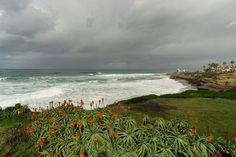 Rainbow.jpg (clouds cold+snap rain rainbow winter beach flowers sky water waves ). Photo by mike92109