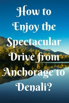When you visit Alaska, there is one thing that you just have to experience – a trip to Denali National Park! For most visitors, your introduction to Alaska will start in Anchorage. Rather than concentrating on what to expect inside the park, we want to sh North To Alaska, Visit Alaska, Alaska Travel, Rv Travel, Alaska Trip, Travel Style, Travel Destinations, Anchorage To Denali, Denali Alaska