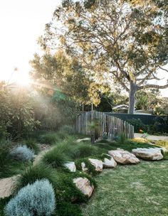 This Woolooware garden from Grant Boyle came with a strong brief to maximise native plant life and some inventive upcycling.
