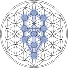 The Kabbalah Tree of Life derived from the Flower of Life.  http://en.wikipedia.org/wiki/Tree_of_life_(Kabbalah)