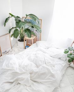 """417 Likes, 5 Comments - Caitlyn Poli (@caitpoli) on Instagram: """"Monday motivation: My bed. ☁️"""""""