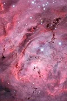 The #LagoonNebula - #M8 | 4000 light-years away in the constellation Sagittarius there is a region of space known as the Lagoon Nebula. This giant cloud of gas and dust is creating intensely bright young stars, and is home to many young star clusters. The nebula also contains Bok globules, which are the dark, collapsing clouds of protostellar material!