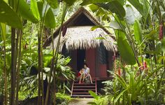 """Costa Rica treehouse lodge. """"Costa Rica has been at the forefront of the green tourism movement for many years now, so it's no surprise the country plays host to some spectacular eco lodges."""""""