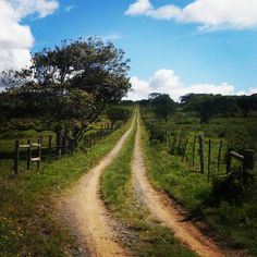"""Two track farm road ascending straight up the hill Typical south african farm roads with beautiful clouds around make for a good shot #farmroad #dirtroad…"""