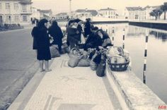 Babywearing, Portugal, Louvre, Facebook, Country, Travel, Bowrider, 1950s, Littoral Zone