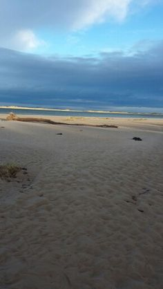 Nairn East beach