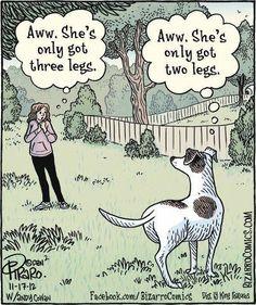 Bizarro - A Dog's Perspective I Love Dogs, Puppy Love, Cute Dogs, Funny Dogs, Funny Animals, Cute Animals, Dog Quotes, Animal Quotes, Animal Humor