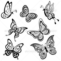 Buy Butterflies, Contours by OK-SANA on GraphicRiver. set symbolical butterflies, hand-draw monochrome contours on a white background Vector EPS 8 plus AI CS 5 plus high-q. Easy Butterfly Drawing, Butterfly Images, Butterfly Tattoo Designs, White Butterfly, Butterfly Art, How To Draw Butterfly, Butterfly Stencil, Art Papillon, Wood Burning Patterns