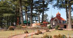 Top 5 pious temple to visit in Shimla | Travelling Cats