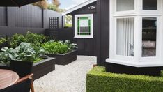 The McDonalds grow green veges year-round in raised beds on the sun-baked patio where Tahitian limes also flourish.