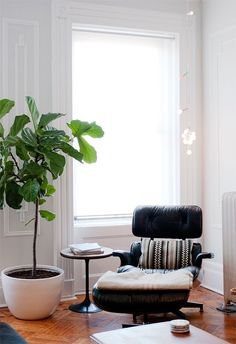 Eames lounger & stripe cushion