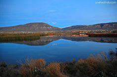 Argentina #unafotoalgiorno El Calafate Lago argenitino