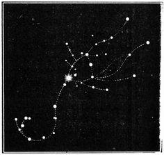 Scorpius Constellation Tattoo The scorpio constellation.