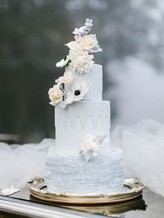 Winter wedding cake ♥