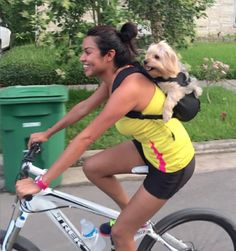 Ruffit Dog Backpack/Carrier - forward facing backpack to carry dogs that's great for outdoor activity or times you need to carry your dog. Can also be worn on your chest for a Baby Bjorn effect.