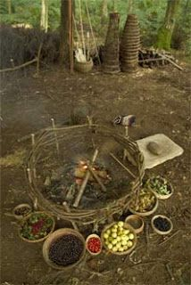 """""""Over the years archaeologists have pieced together how Iron Age Britain's prepared their food by looking at the evidence that has been left behind including pots, pans and other food related tools.  Most of the cooked food would have been cooked on an open fire which would have been done either outside during the summer or inside a dwelling during the winter. """""""