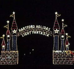 Holiday Light Fantasia will begin on December 1st and run through January 1st!