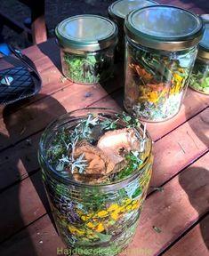 Natural Cosmetics, Homemade, Canning, Nature, Diy, Aromatherapy, Naturaleza, Home Made, Bricolage
